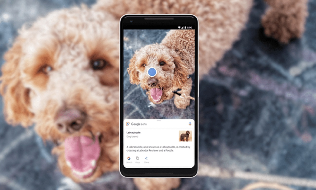Photo of You can Make Calls with Google Smart Screen Pictures!