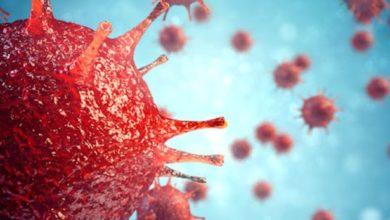 Photo of World's Strongest Antibiotic Discovered Against Coronavirus!