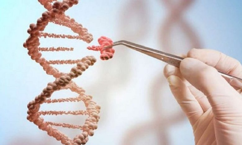 Photo of DNA Will Be Used To Store Data!