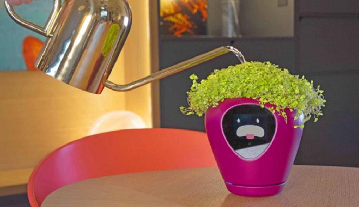 smart flower pot lua moblobi