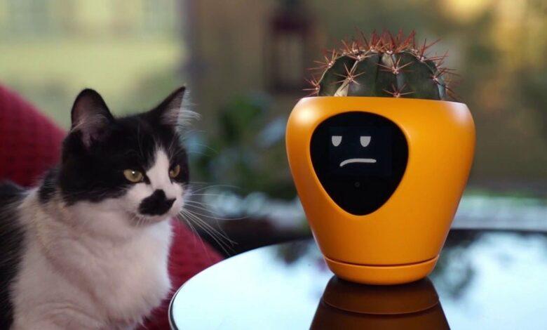 Photo of Smart Flower Pot That Makes Plants Talk!