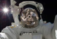 Photo of Effects Of Spaceflight On The Human Body