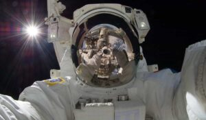 Effects Of Spaceflight On The Human Body moblobi
