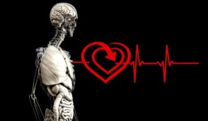 can you 3D print organs moblobi